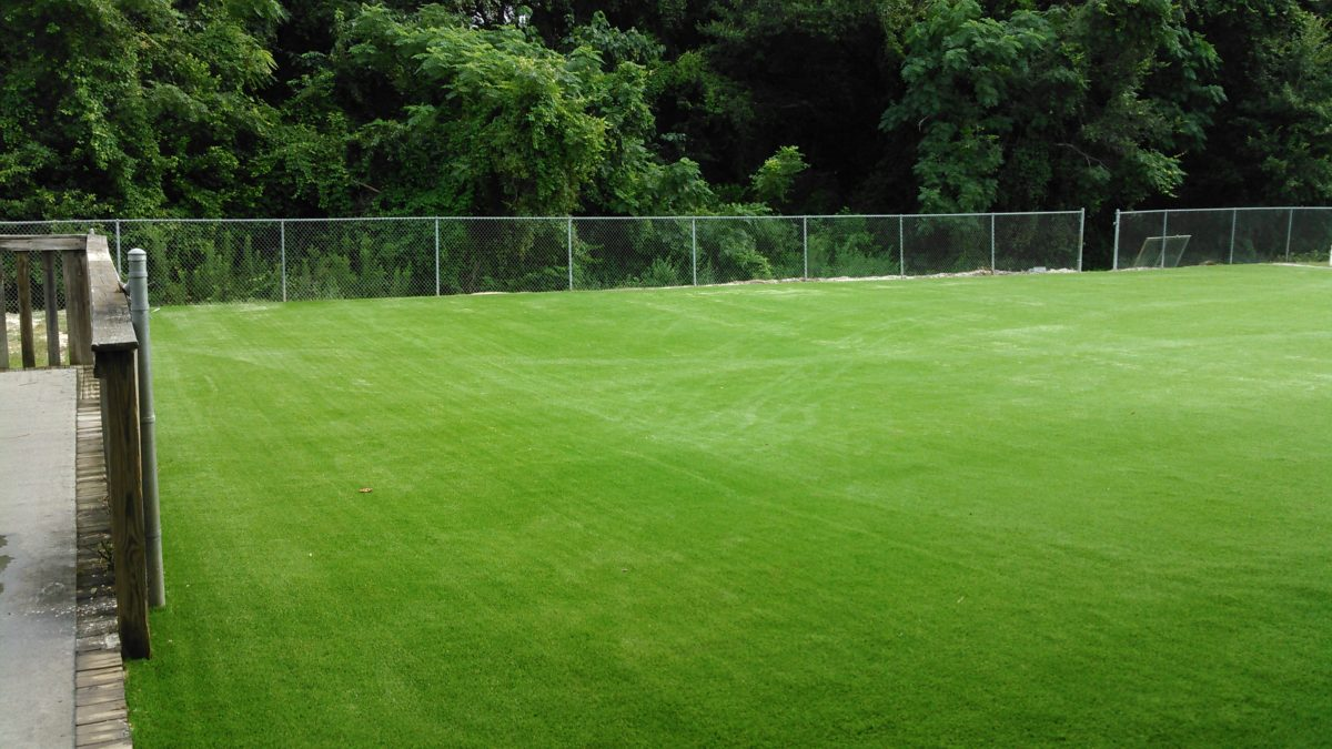 Florida Artificial Turf Field 6