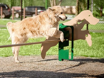 other outdoor and recreational spaces and dog park design and installation services