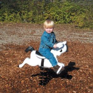 Mustang Spring Rider