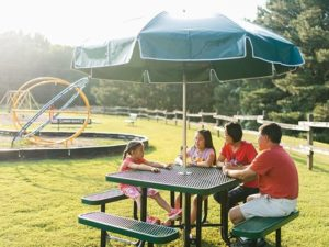 picnic table umbrella patio 2