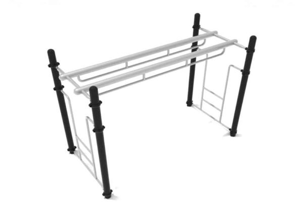 double parallel bar commercial ladder 1