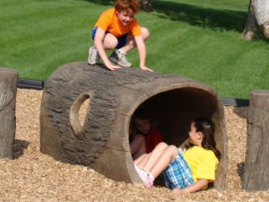 6ft nature themed playground log crawl tunnel 1