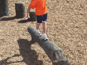 8ft fallen tree nature themed playground balance beam 2