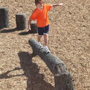 8ft-fallen-tree-nature-themed-playground-balance-beam (2)