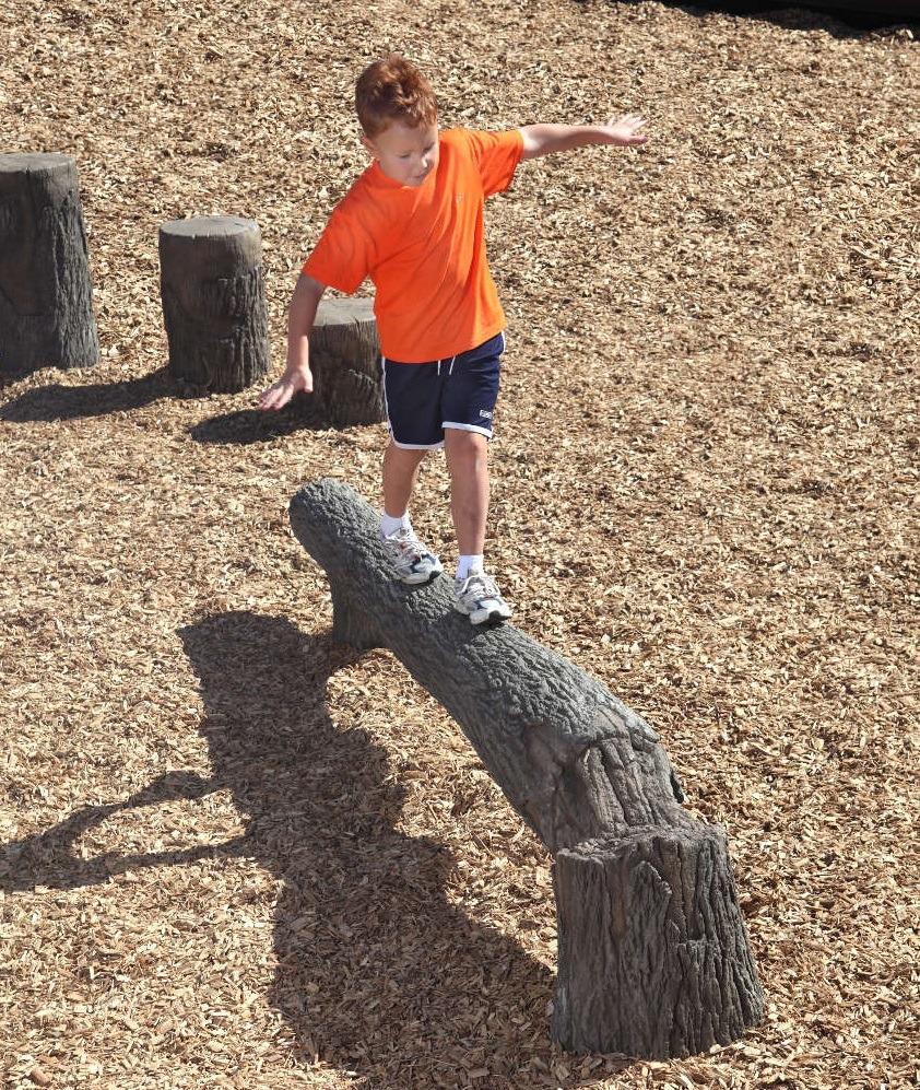 Fallen Tree Playground Balance Beam Pro Playgrounds