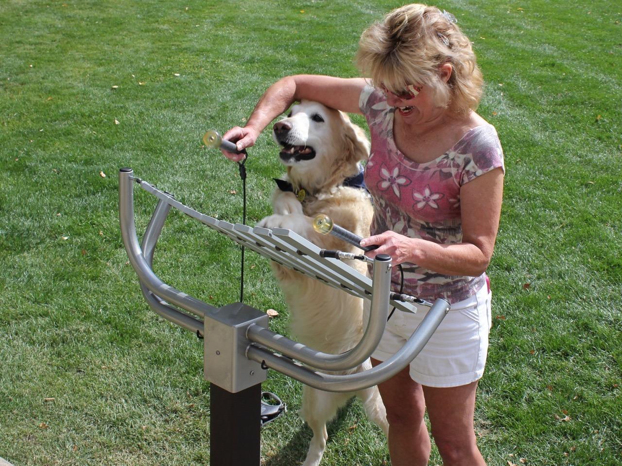 aria outdoor playground musical instruments 3