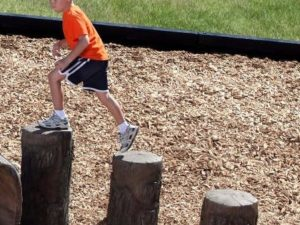 playground stepping stumps nature theme ages 5 12 1