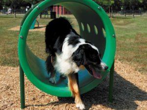 Doggie Crawl Dog Park 1
