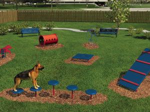 Intermediate Course Dog Park 1
