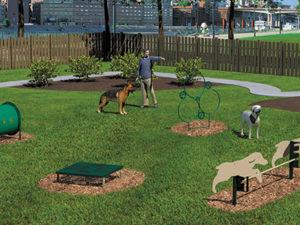 Novice Course Dog Park 1