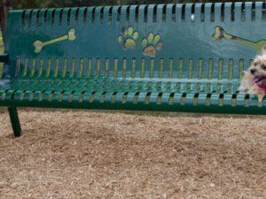 Pooch Perch Bench Dog Park 1