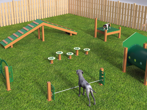 Recycled Intermediate Course Dog Park 1