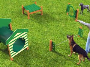 Recycled Novice Course Dog Park 1