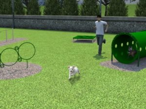 Small Dog Course Dog Park 1