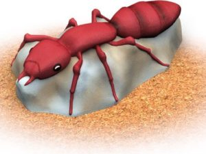 fire ant themed playground climber